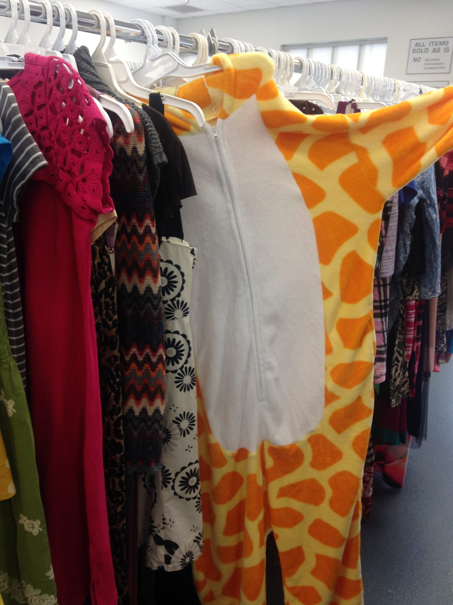 Giraffe onesie hanging up on a rack of dresses